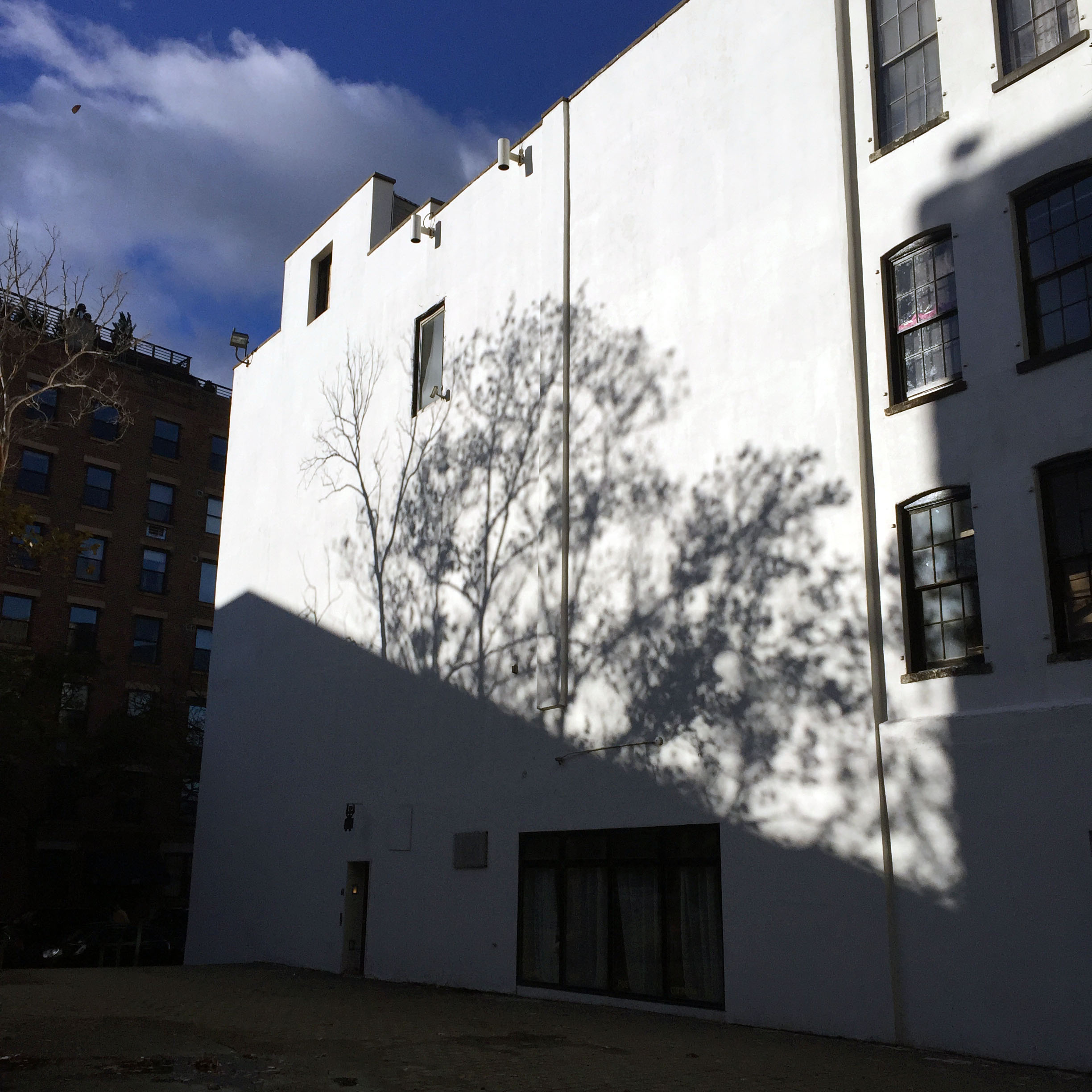 Tree shadows on SFPC building